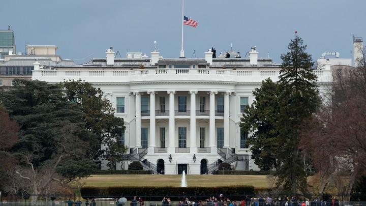 Пока постоим в сторонке: В Белом доме рассматривают варианты, как воздействовать на Сирию