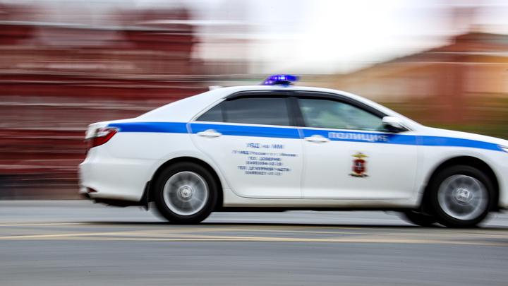 В Новосибирске завели дело после нападения на дружинника