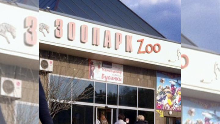 Челябинцы просят губернатора не увольнять директора зоопарка