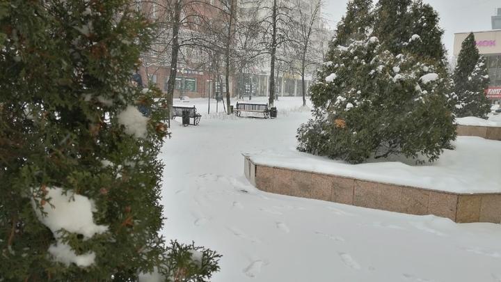 В Челябинск возвращаются снегопады