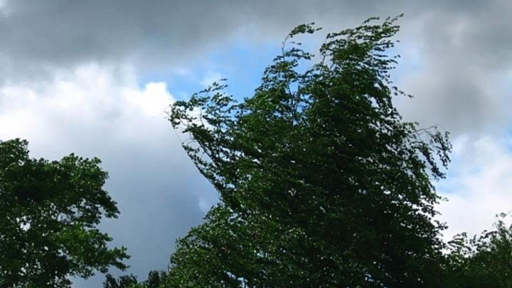 В Сочи прогнозируют сильный ветер