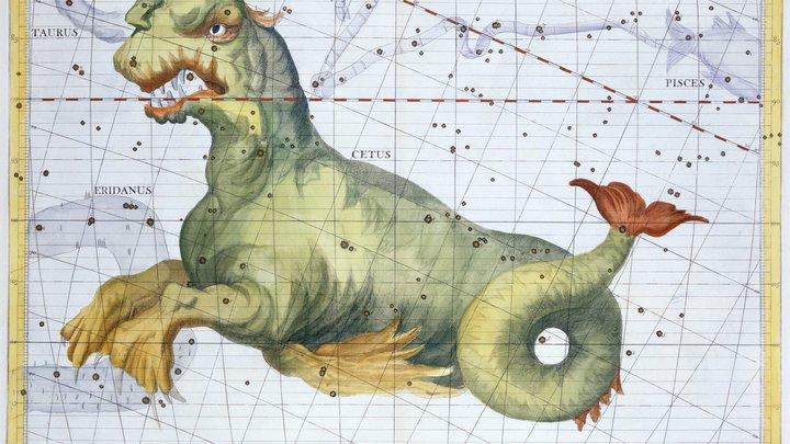 В Британии на берег реки выбросило шипастое чудовище с клыками - фото