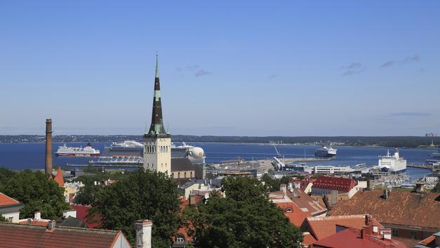Российские дипломаты намекнули эстонскому блогеру, почему он «абажур»