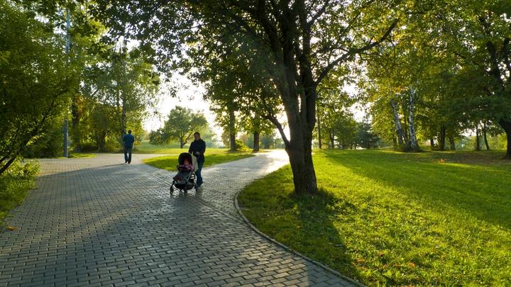 В Подмосковье уже в этом году появятся 15 новых парков