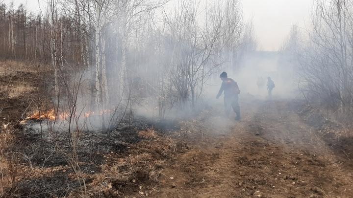 В Акшинском районе Забайкалья горит 45 гектаров леса