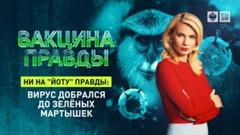 Ни на йоту правды: Вирус добрался до зелёных мартышек