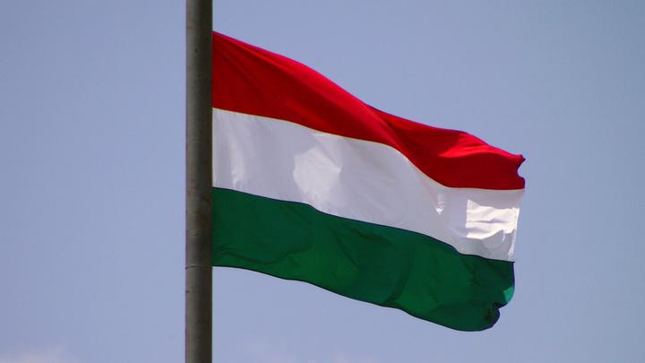 Москаль свалил вину на гастролеров из Львова за попытку сжечь флаг Венгрии