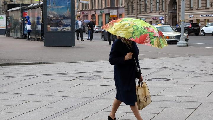 Пенсия в 4 раза больше: Обнародованы пенсионные хотелки народа