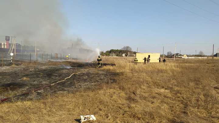 Во Владимирской области начались травяные пожары
