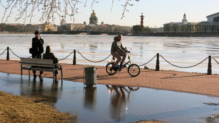 Снег посреди весны: «Белые хлопья» засыпали Санкт-Петербург