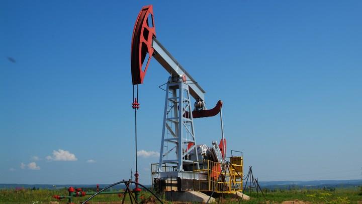 Новосибирские учёные придумали способ сократить время очистки нефти от воды