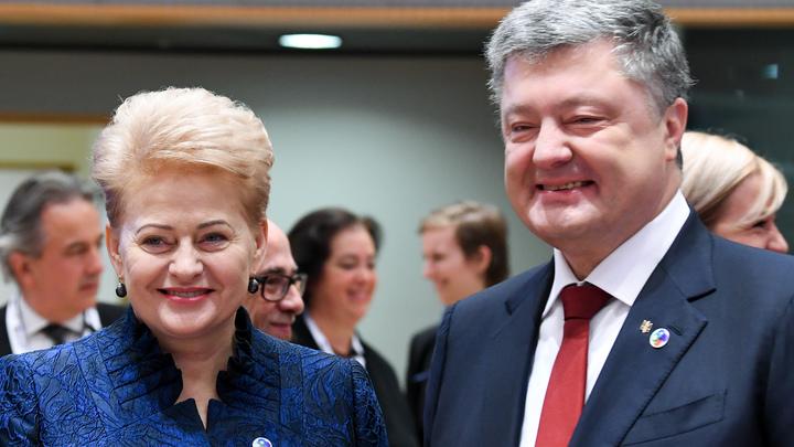 Президент Литвы сообщила, что не пожалеет никаких средств, чтобы навредить России