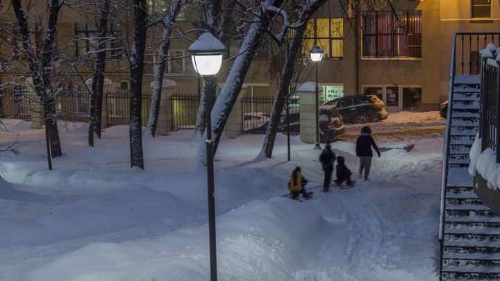 В Новосибирске школьники избили 9-летнюю девочку