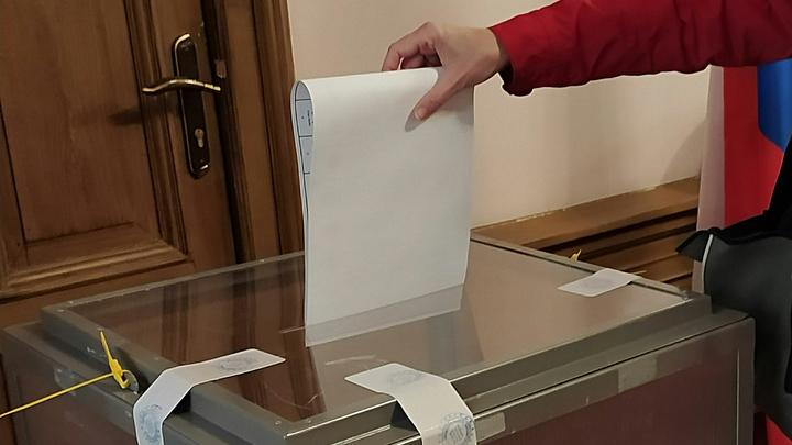 На муниципальных выборах в Новосибирской области впереди Единая Россия