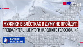 Мужики в блёстках в Думу не пройдут: Предварительные итоги народного голосования