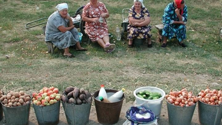 Привозной картошке в России оставили только 5%: Путин одобрил новую доктрину продовольственной безопасности