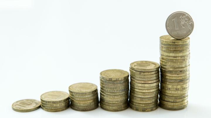 МРОТ оценили в 20 тысяч рублей В Госдуме напомнили про затраты на интернет и блага цивилизации