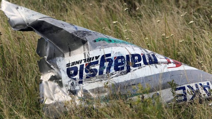 Ответственность засбитие МН17 должна признать Российская Федерация , считаетЕС