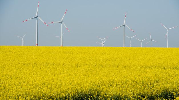 ВЭБ инвестирует в постройку ветропарка в Ульяновской области более 5 млрд рублей