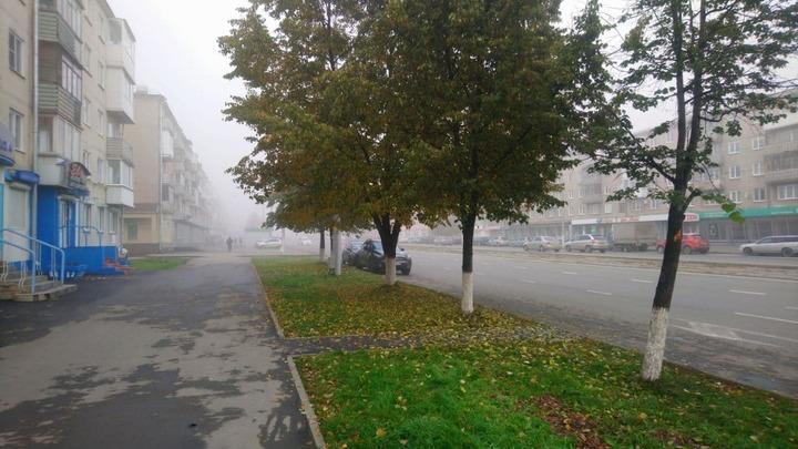 В ночь с понедельника на вторник температура в Кемерове опускалась ниже нуля