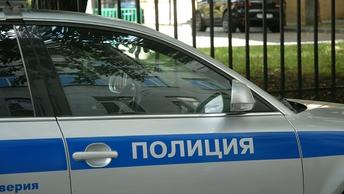 Милашка-полицейский из Петербурга завоевал любовь соцсетей