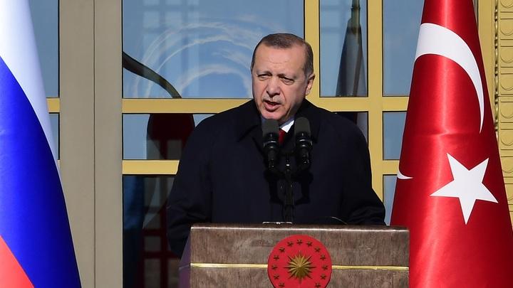 Дорогой друг Путин: Эрдоган сообщил, что Россия и Турция позаботятся о мире во всем мире