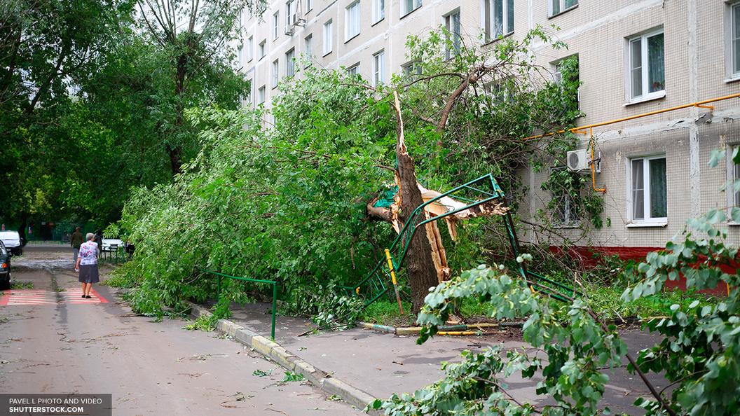 В пятницу в Москве сохраняется ураганная погода