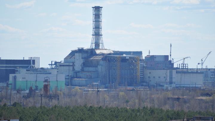 Вытащили из реактора: На Украине спасли лося, купающегося у Чернобыльской АЭС - видео