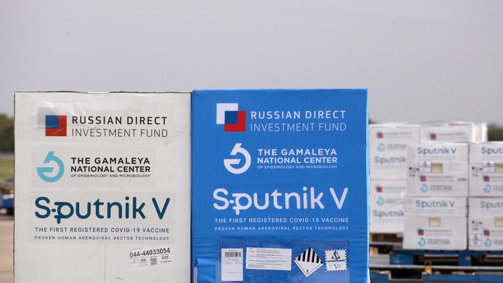 Укол от русофобии: Михеев – о том, как помочь Европе капитулировать перед жидким оружием Путина