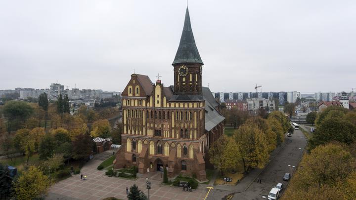 Фестиваль Pop Up в Калининграде 2021: что есть в программе мероприятий