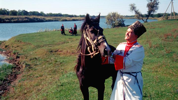 Оскорбление казаков на Украине не останется без ответа: Пускай эти задницы будут красные от нагаек