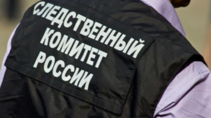 Провокации продолжились в Сети: Следствие ищет зачинщиков событий в селении Кенделен