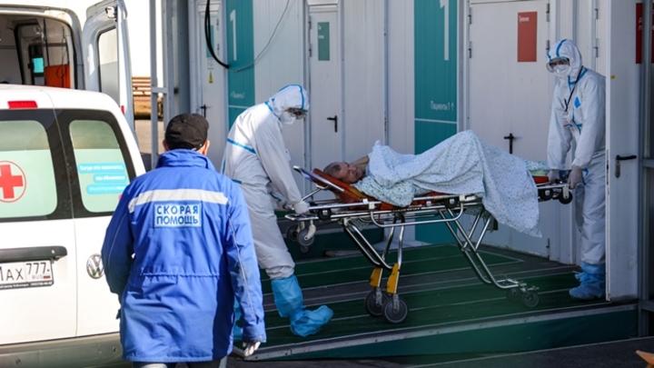 205 новых случаев коронавируса выявили медики в Кузбассе 1 августа
