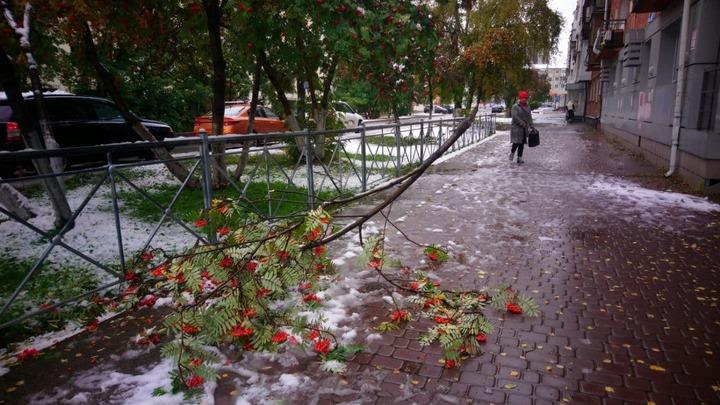 В Кузбассе 28 сентября днём потеплеет до +9, а ночью похолодает до -7 градусов