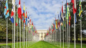США защищают Израиль в ООН, бойкотируя обсуждение проблем прав человека в Палестине