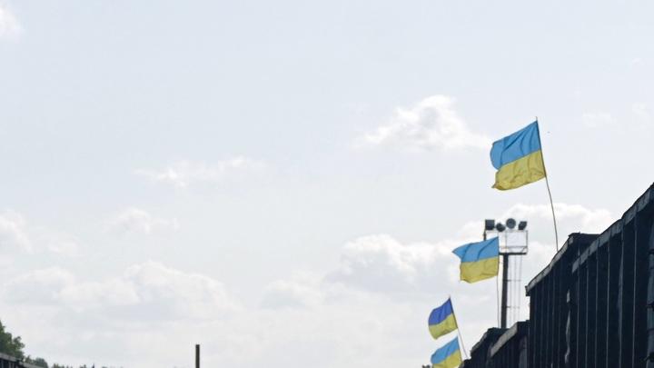 Грызут бетон, пугают туристов: черви со стальными зубами третий год третируют украинский курорт