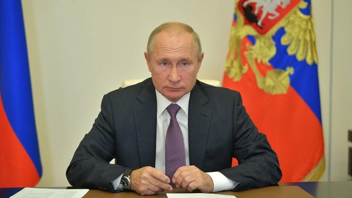 Удалёнка надолго? В новинках Путина увидели скрытый намёк