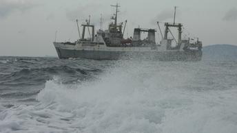 Названа причина пропажи 21 моряка в Японском море - источник
