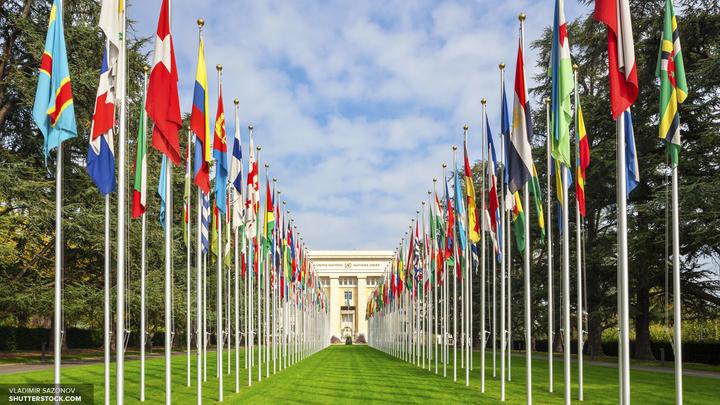 Переговоры по урегулированию в Сирии начались в Женеве
