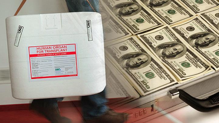 Торговцы органами отчитались о недополученной прибыли