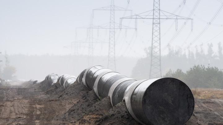 Просто обойдем: Газпром пригрозил Дании жестким ответом на саботаж Северного потока - 2
