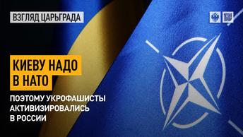 Киеву надо в НАТО. Поэтому укрофашисты активизировались в России