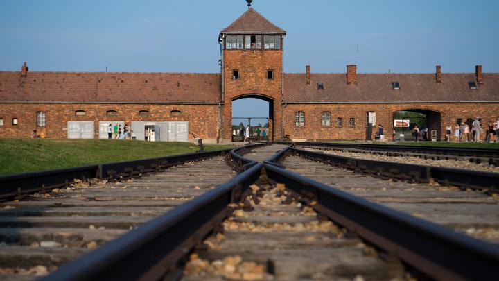 Германия получила первый иск за эксперименты нацистов в Освенциме