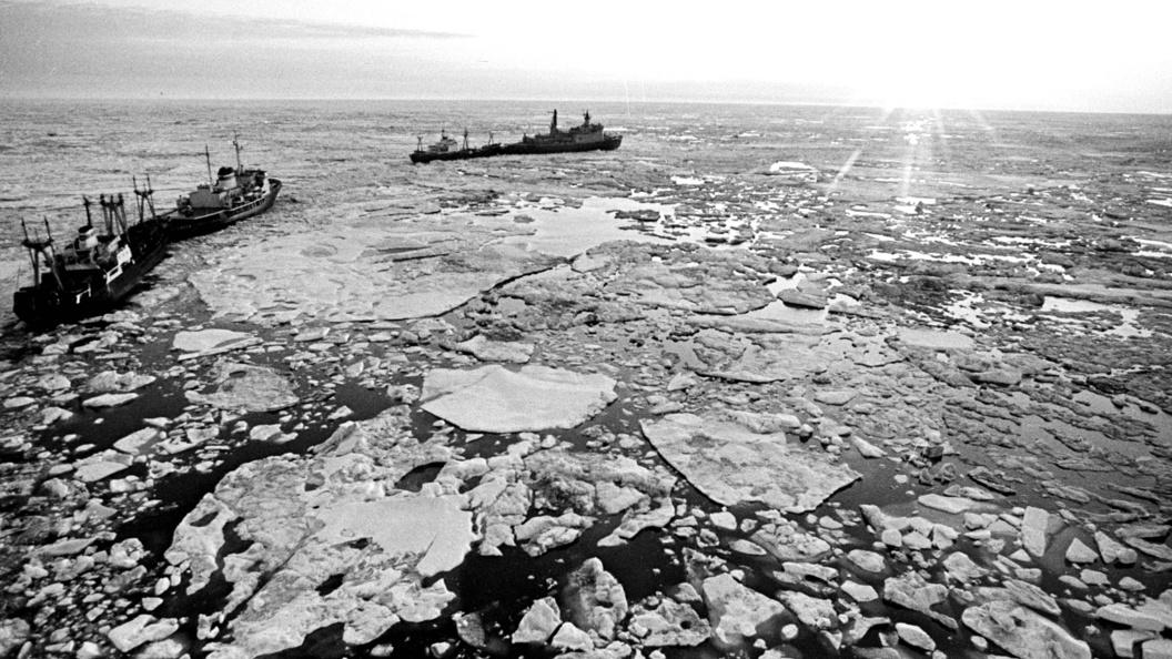 Русский проект самого мощного в мире ледокола сдадут до конца 2017 года