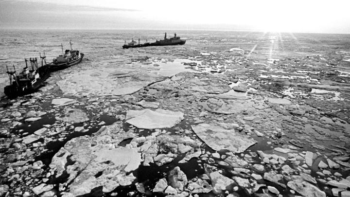 В Арктике могут быть гигантские залежи нефти: Это настоящий переворот