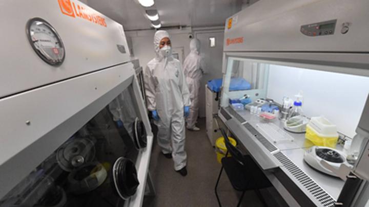 Власти объяснили задержку выплат медикам Курганской области за риск заболеть ковидом