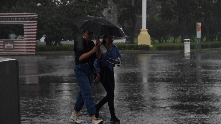 Дождь и ураганный ветер: на Кубани объявлено экстренное предупреждение по непогоде