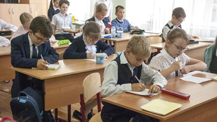 Курганскую область на всероссийском конкурсе Учитель года представит педагог гимназии №19