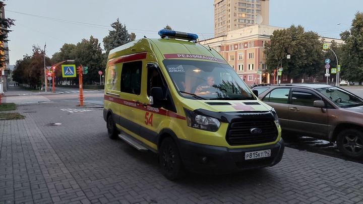 В Новокузнецке пострадавшие от агрессивного алабая мальчики получили 80 тысяч компенсации