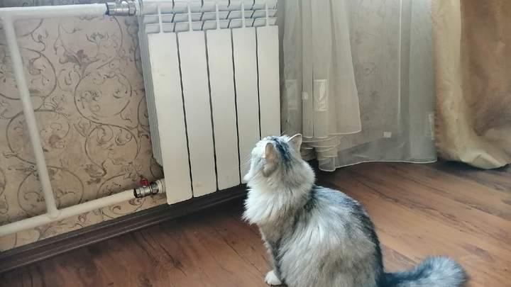 В Челябинске в двух домах отключили отопление